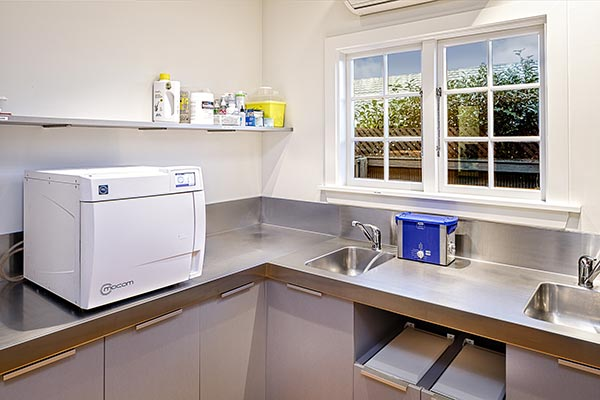 Bush Dental hygienic cleaning area